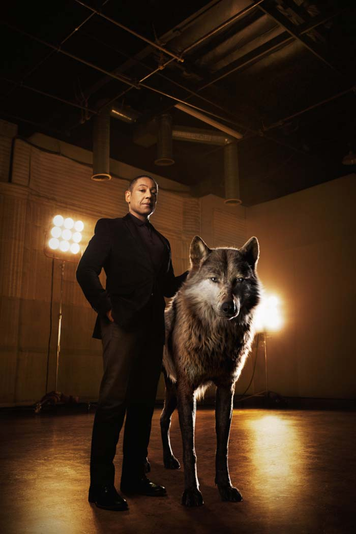 "THE JUNGLE BOOK - Akela is the strong and hardened alpha-male wolf who shoulders the responsibility of his pack. He welcomes Mowgli to the family, but worries he may one day compromise their safety. ""Akela is a fierce patriarch of the wolf pack,"" says Giancarlo Esposito, who voices the character. ""He believes the strength of the pack lies in what each and every wolf offers. He's a great leader, a wise teacher."" Photo by: Sarah Dunn. ©2016 Disney Enterprises, Inc. All Rights Reserved."