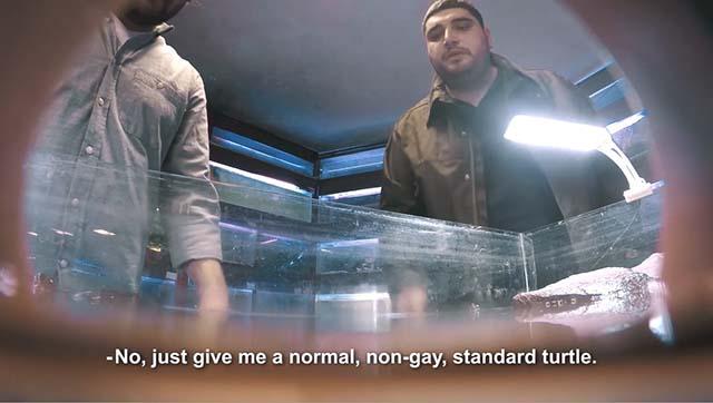 gayturtle-elmaaltshift-1