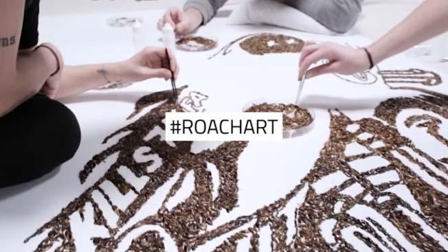 raid-roach-art-elmaaltshift-2