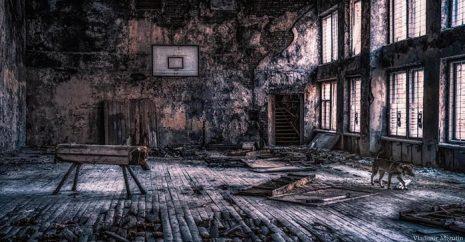 cernobil-elmaaltshift-6